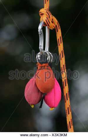Carabiner clip with sacks of sand used as throwing weights so the rope can be positioned for rope climbing - Stock Photo