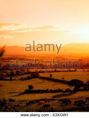 Mitchelstown, County Cork, Ireland, Galtee Mountains in the distance - Stock Photo