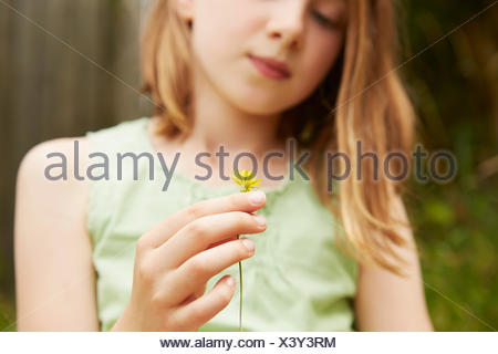 Cropped shot of girl with holding dandelion flower - Stock Photo