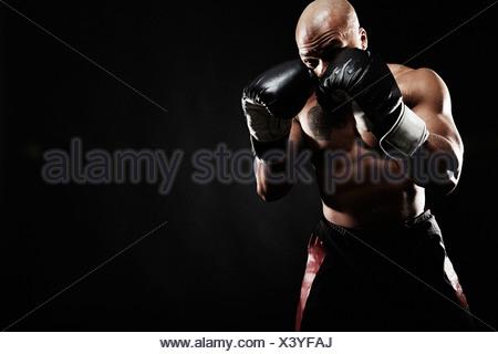Boxer punching - Stock Photo