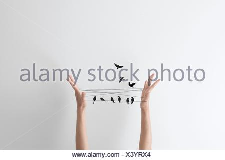 String hand game with birds perched on the string - Stock Photo