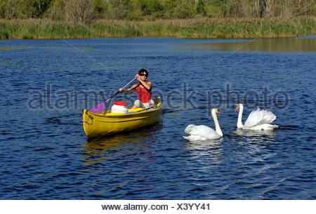 canoe in Quinson lake in Verdon natural park, France, Provence, Verdon - Stock Photo