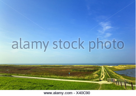 saltmarshes and beach in Schillig, Germany, Lower Saxony, Frisia - Stock Photo