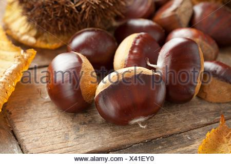 Heap of whole raw sweet chestnuts. - Stock Photo
