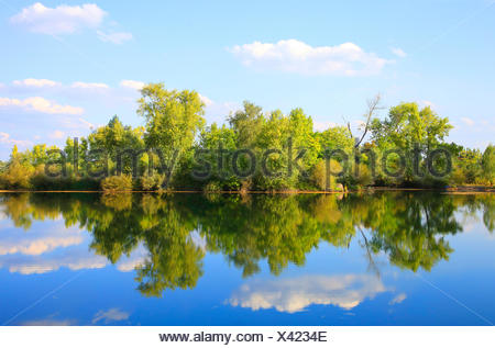 river flood plain in autumn, Germany - Stock Photo