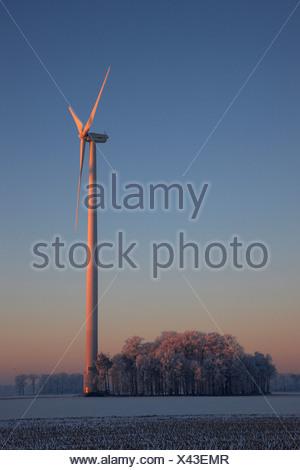 winter morning in the Muensterland with wind wheel, Germany, North Rhine-Westphalia, Steinfurt - Stock Photo