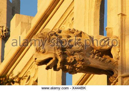 Gargoyle The Llotja, XV century Palma Mallorca Balearic Islands Spain - Stock Photo