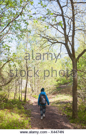 Sweden, Gothenburg Archipelago, Vastergotland, Styrso, Rear view of boy (10-11) walking through forest - Stock Photo