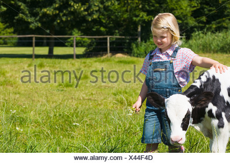 A girl walking with a calf - Stock Photo