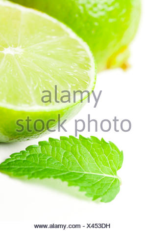 leaf isolated mint - Stock Photo