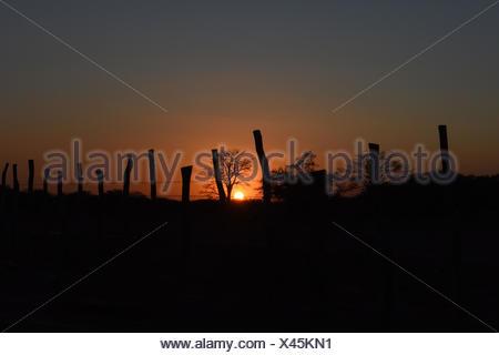 Sunset, 2017, Caatinga, Boa Vista, Paraíba, Brazil - Stock Photo