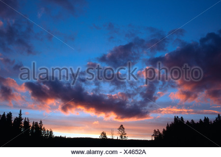 Dramatic clouds at sunset over pine trees and forests, Tirol, Austria - Stock Photo