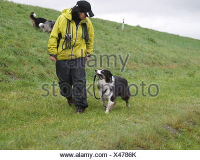 woman and australian shepherd - Stock Photo