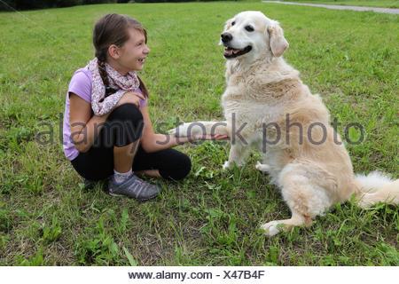 Ein Hund gibt einem Mädchen die Pfote auf einer Wiese - Stock Photo