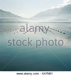 Markers in still rural lake - Stock Photo
