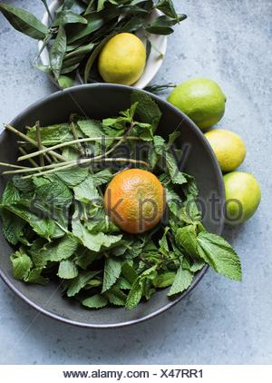 Overhead view of mint leaves and citrus fruits in bowl - Stock Photo