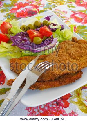 Fillets breaded with salad - Stock Photo