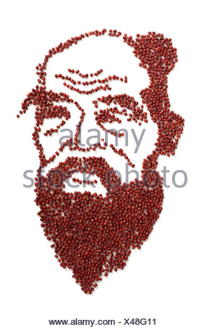 Portrait of Confucius made of red beans - Stock Photo