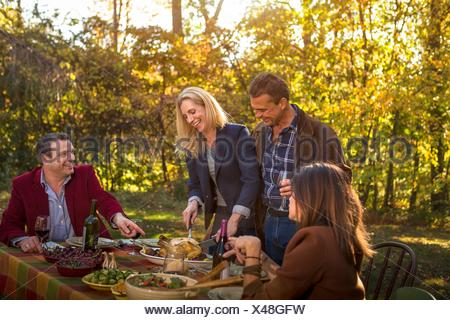 Two mature couples serving roast dinner at garden party - Stock Photo