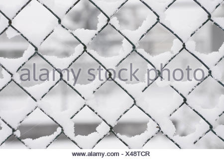 Mesh wire fence, detail, fence, wire netting, wire, wire fence Stock ...