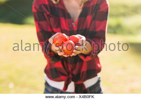 Woman holding some tomatoes - Stock Photo