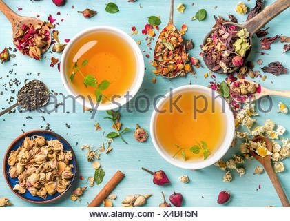 Two cups of healthy herbal tea with mint, cinnamon, dried rose and camomile flowers in spoons over blue background, top view - Stock Photo
