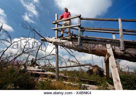 man on Kyrill path looking at storm losses, Germany, North Rhine-Westphalia, Sauerland, Schmallenberg - Stock Photo