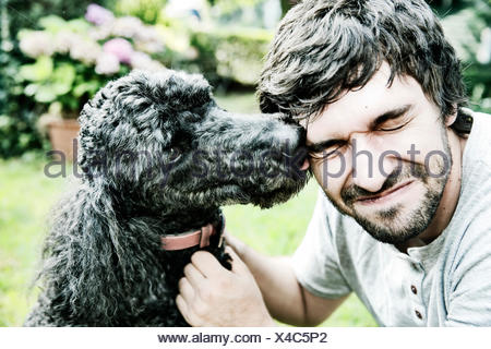 Poodle licking the face of his owner in the garden - Stock Photo