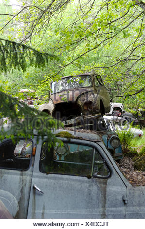 Cars at junkyard in nature setting, Sweden, Europe - Stock Photo