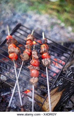 Chunks of beef and cherry tomato kebabs grilling on skewers above burning embers of camp fire - Stock Photo