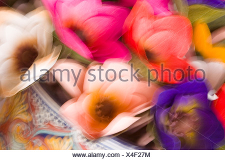 Abstract design of silk flowers with motion blur usa stock photo illustration abstract design of silk flowers with motion blur usa stock photo mightylinksfo