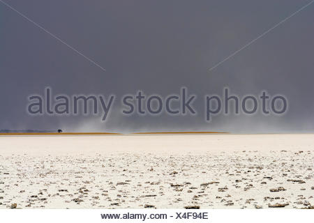 A storm approaching the salt pan. - Stock Photo