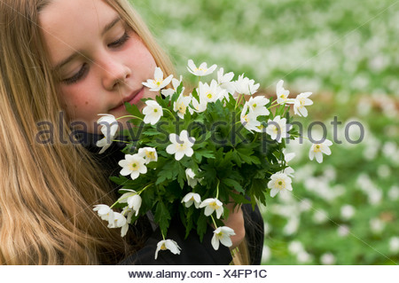 Scandinavia, Sweden, Smaland, Girl  holding bunch of white anemones, close-up - Stock Photo