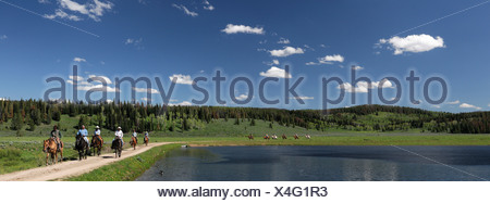 Guest's Horseback riding Flying A Ranch Guest Ranch Bondurant Wyoming USA forest lake - Stock Photo