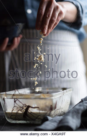 coffee halva chocolate chip ice cream - Stock Photo