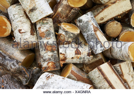 View of firewood, close-up - Stock Photo