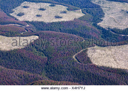 Aerial photography over the South Cariboo Chilcotin region of British Columbia Canada - Stock Photo