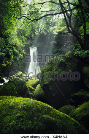 Waterfall somersault Th Prego on Sao Miguel, the Azores, Portugal - Stock Photo