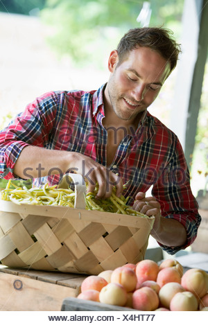 A farm stand with fresh organic vegetables and fruit.  A man sorting beans in a basket. - Stock Photo