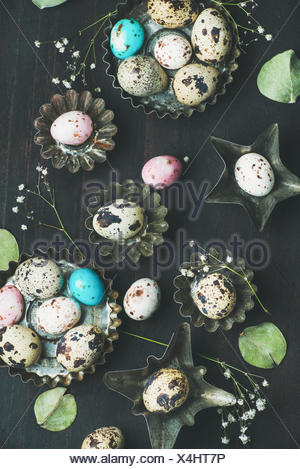 Colorful painted quail eggs in metal molds, dried wild flowers and leaves for Easter holiday over dark scorched wooden background, top view - Stock Photo