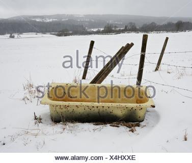 Scandinavia, Sweden, Vastergotland, Old bathtub in snow - Stock Photo
