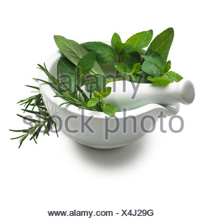Herbs in a mortar and pestle - Stock Photo