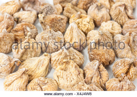 fruit dry dried up barren fig dried optional studio photography fruit fig figs - Stock Photo