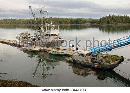 Fishing cutter and boats near Prince Rupert, British Columbia, Canada, North America - Stock Photo