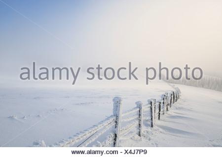 Snowy fence, Mt. Unterberg, Lower Austria, Austria, Europe - Stock Photo