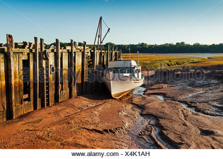 Fishing boat stranded on the mud flats at low tide in Minas Basin.  Bay of Fundy.  Delhaven, Nova Scotia. Canada. - Stock Photo