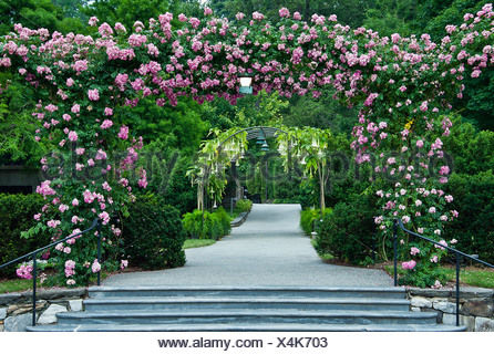 Rose arbor and path, Longwood Gardens, Kennet Square, Pennsylvania - Stock Photo