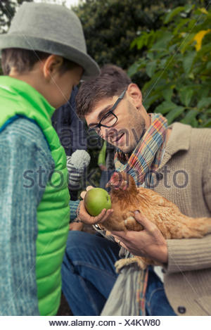 Father holding a chicken bird and son feeding apple, Bavaria, Germany, - Stock Photo