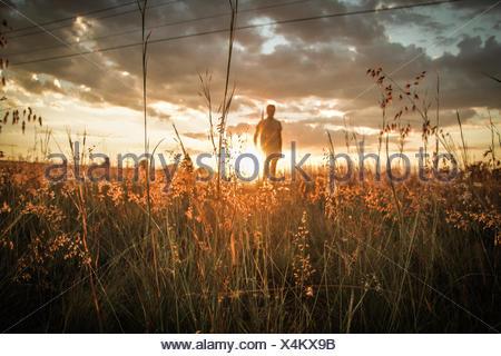 Man In Field As Sunset