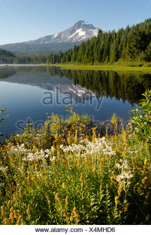 Trillium Lake and Mount Hood volcano, Cascade Range, Oregon, USA - Stock Photo